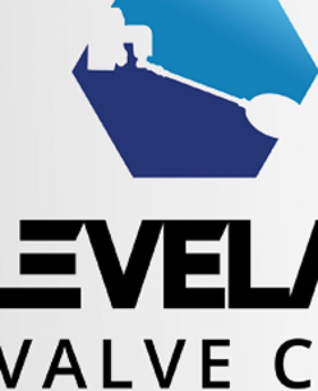 Valve Company Logo